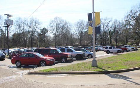 Senior parking spots meant for seniors, seniors only