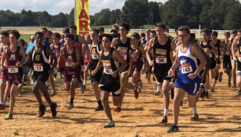 Cross country team works towards goals