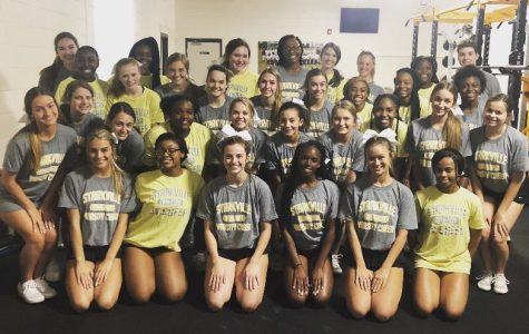 Cheerleaders take on new category at state